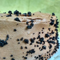 Dark, dark chocolate from the cake to the pudding filling to the fudgy frosting earn this cake its name: Blackout cake!